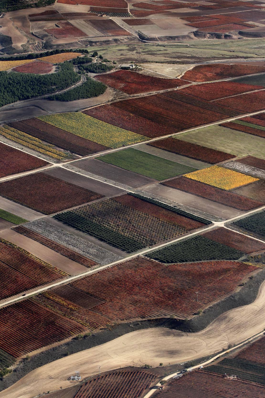 La Rioja Baja (de Alcanadre a Yerga y vuelta hasta Galilea)